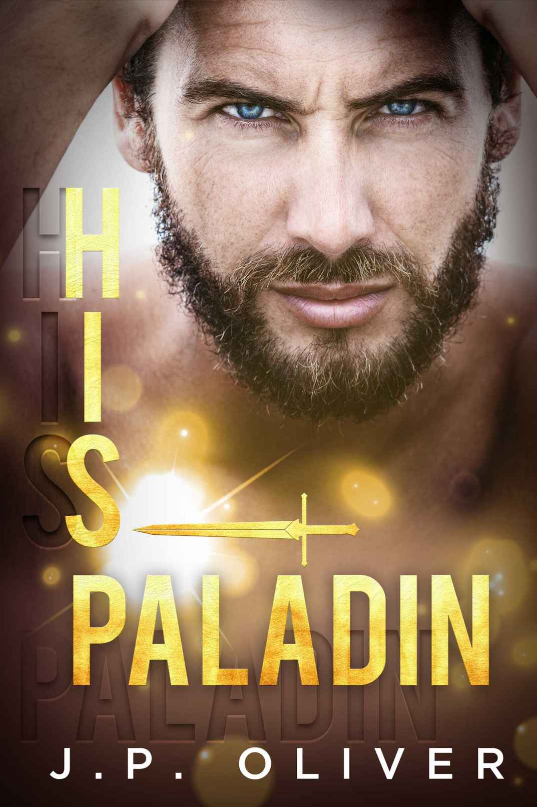 His Paladin cover image